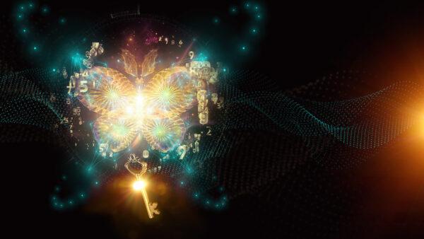 Ključ leptira